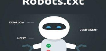 Ce reprezinta robots.txt?